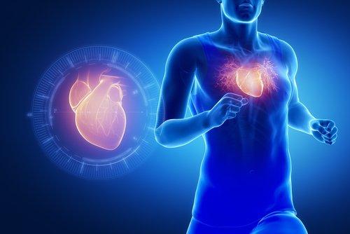 Quais os riscos dos esteroides anabolizantes para o coração do atleta?